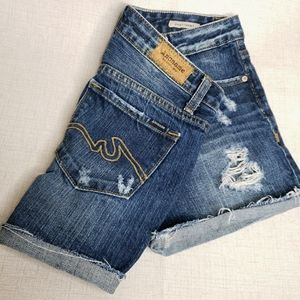 Anoname Daisy Shorts 27 Distressed Jean Shorts
